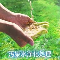 セシウム汚染水浄化処理